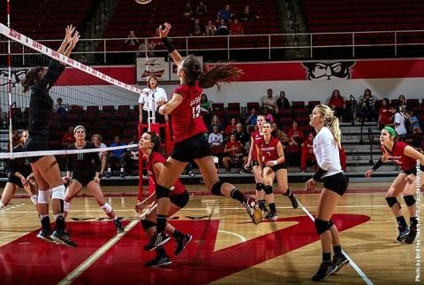 Austin Peay Women's Volleyball. (APSU Sports Information)