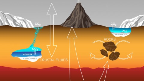 This graphic depicts paths by which carbon has been exchanged among Martian interior, surface rocks, polar caps, waters and atmosphere, and also depicts a mechanism by which it is lost from the atmosphere with a strong effect on isotope ratio. (Lance Hayashida/Caltech)