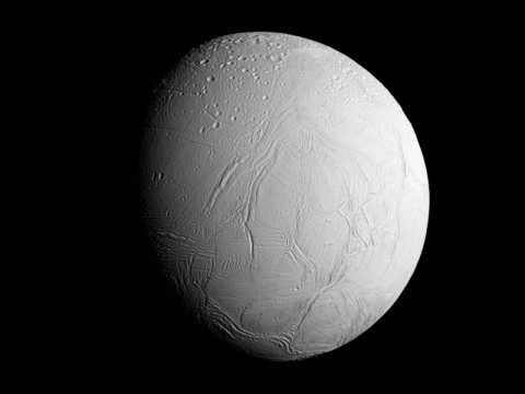 NASA's Cassini spacecraft captured this view as it neared icy Enceladus for its closest-ever dive past the moon's active south polar region. (NASA/JPL-Caltech/Space Science Institute)
