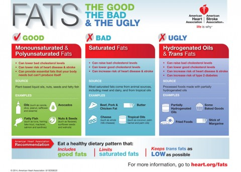 Fats - The Good the Bad and the Ugly Infographic