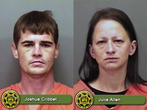 Joshua Cribbet and Julia Allen