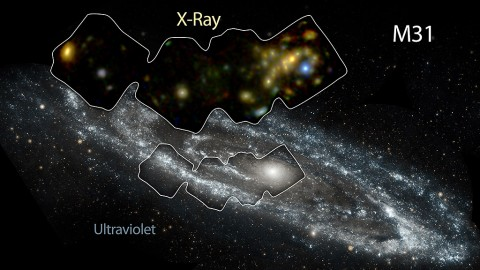 NASA's Nuclear Spectroscope Telescope Array, or NuSTAR, has imaged a swath of the Andromeda galaxy -- the nearest large galaxy to our own Milky Way galaxy. (NASA/JPL-Caltech/GSFC)