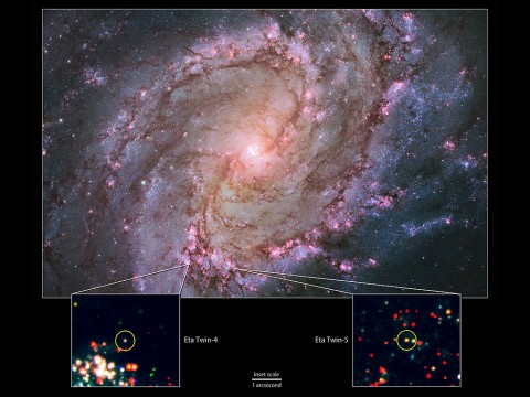 "Hubble view of M83 -- the only galaxy known to host two potential ""Eta twins."" Its high rate of star formation increases the chances of finding massive stars that have recently undergone an Eta Carinae-like outburst. Bottom: Hubble data showing the locations of M83's Eta twins. (NASA, ESA, the Hubble Heritage Team (STScI/AURA) and R. Khan (GSFC and ORAU))"
