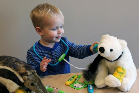 Teddy Bear Clinic to be held at the Nashville Zoo February 14th