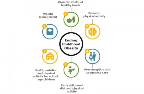 The Commission on Ending Childhood Obesity (ECHO) recommendations
