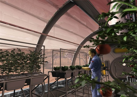 An artist concept depicts a greenhouse on the surface of Mars. Plants are growing with the help of red, blue and green LED light bars and a hydroponic cultivation approach. (SAIC)