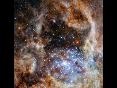 This Hubble image shows the central region of the Tarantula Nebula in the Large Magellanic Cloud. The young and dense star cluster R136 can be seen at the lower right of the image. This cluster contains hundreds of young blue stars, among them the most massive star detected in the universe so far. (NASA, ESA, P Crowther (University of Sheffield))