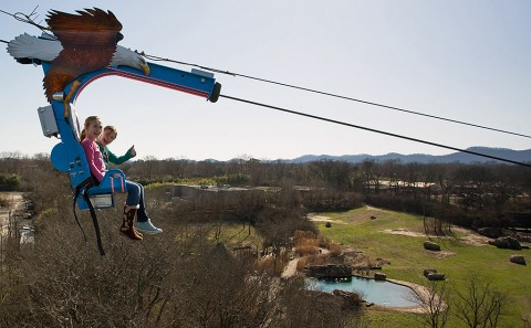 See the Nashville Zoo from a different perspective on the Soaring Eagle. (Amiee Stubbs)