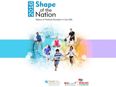 2016 Shape of the Nation