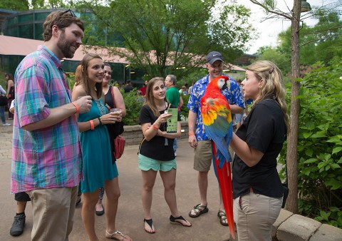 Brew at the Zoo to be held June 4th. (Amiee Stubbs)