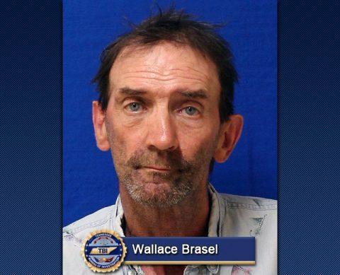 Wallace Brasel