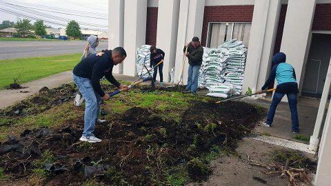 Volunteers build five raised garden beds.