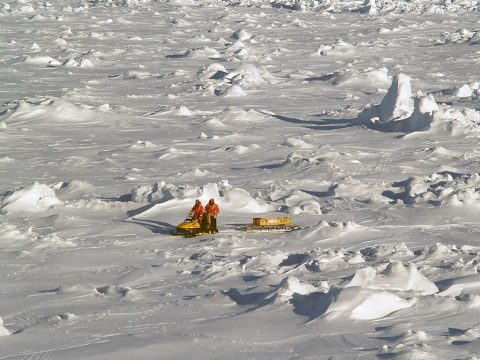 Older, rougher and thicker Antarctic sea ice in the Bellingshausen Sea in Oct. 2007, within the sea ice shield surrounding Antarctica. The ice in this region is approximately 33 feet (10 meters) thick. (M.J. Lewis)