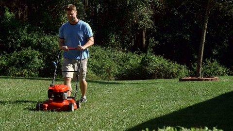 Tennessee Division of Consumer Affairs gives Tips to Avoid Lawn Care Scams.