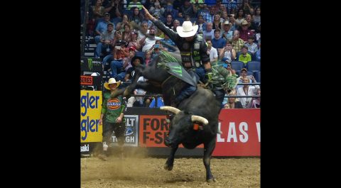 J.B. Mauney has a money ride on a monster bull.