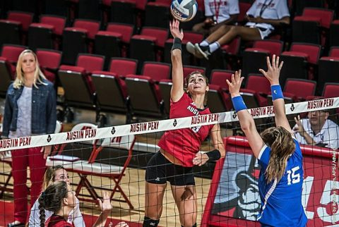 Austin Peay Volleyball goes undefeated at Bulldog Invitational. (APSU Sports Information)