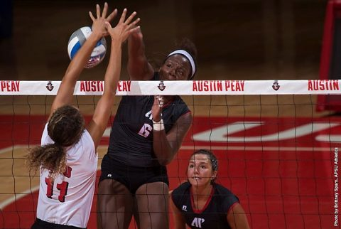 Austin Peay Volleyball drops four set game to Mexico State Friday morning. (APSU Sports Information)