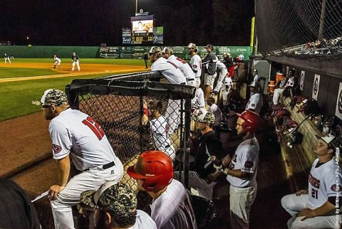 Austin Peay Baseball's Red-Black World Series begins Friday at 3:30pm at Raymond C. Hand Park. (APSU Sports Information)