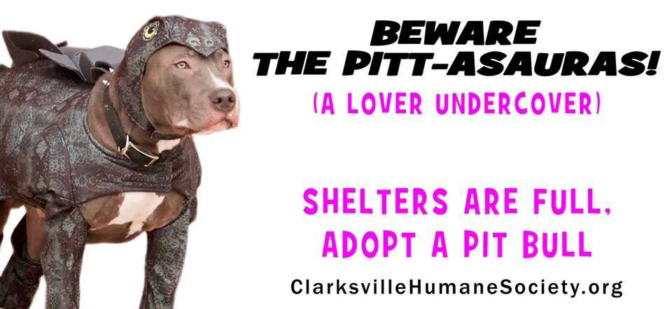 Clarksville's 4th Annual Pit Bull Awareness Day set for October 16th