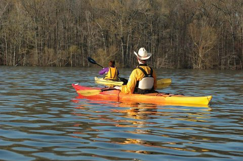 Kayakers enjoying a paddle along the shoreline of Land Between the Lakes. (Forest Service staff)