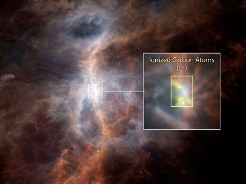 The dusty side of the Sword of Orion is illuminated in this striking infrared image from ESA's Hershel Space Observatory. Within the inset image, the emission from ionized carbon atoms (C+) is overlaid in yellow. (ESA/NASA/JPL-Caltech)