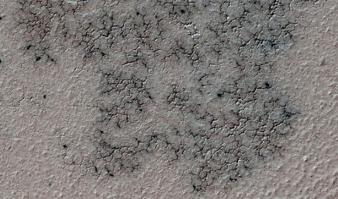 This image shows spidery channels eroded into Martian ground. It is a Sept. 12, 2016, example from HiRISE camera high-resolution observations of more than 20 places that were chosen in 2016 on the basis of about 10,000 volunteers' examination of Context Camera lower-resolution views of larger areas. (NASA/JPL-Caltech/Univ. of Arizona)