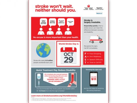 World Stroke Day 2016 Infographic. (American Stroke Association)