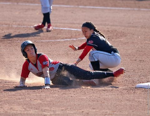 Austin Peay Softball to host 16 games and plays in four tournaments in 2017. (APSU Sports Information)