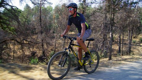 People who bike regularly, either recreationally or as a way to commute, appear to have a lower risk of cardiovascular illness, according to studies conducted in Denmark and Sweden.