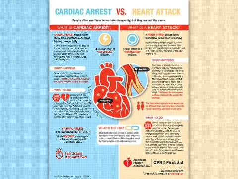 "CARDIAC ARREST occurs when the heart malfunctions and stops beating unexpectedly. Cardiac arrest is an ""ELECTRICAL"" problem. A HEART ATTACK occurs when blood flow to the heart is blocked. A heart attack is a ""CIRCULATION"" problem. A blocked artery prevents oxygen-rich blood from reaching a section of the heart. If the blocked artery is not reopened quickly, the part of the heart normally nourished by that artery begins to die. (American Heart Association)"