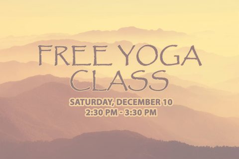 Free Yoga Class at Clarksville-Montgomery County Public Library this Saturday, December 10th