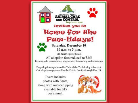 Montgomery County Animal Care and Control Home for the Paw-lidays 2016
