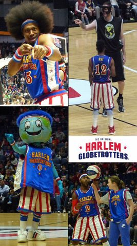 Can you put your finger on why the Globies are so much fun?