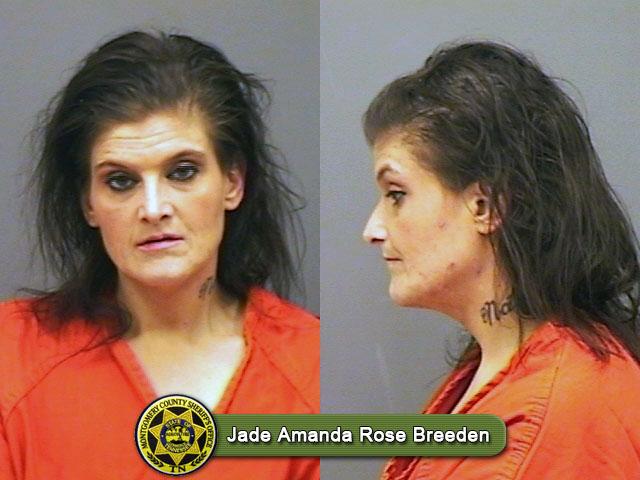 Jade Amanda Rose Breeden
