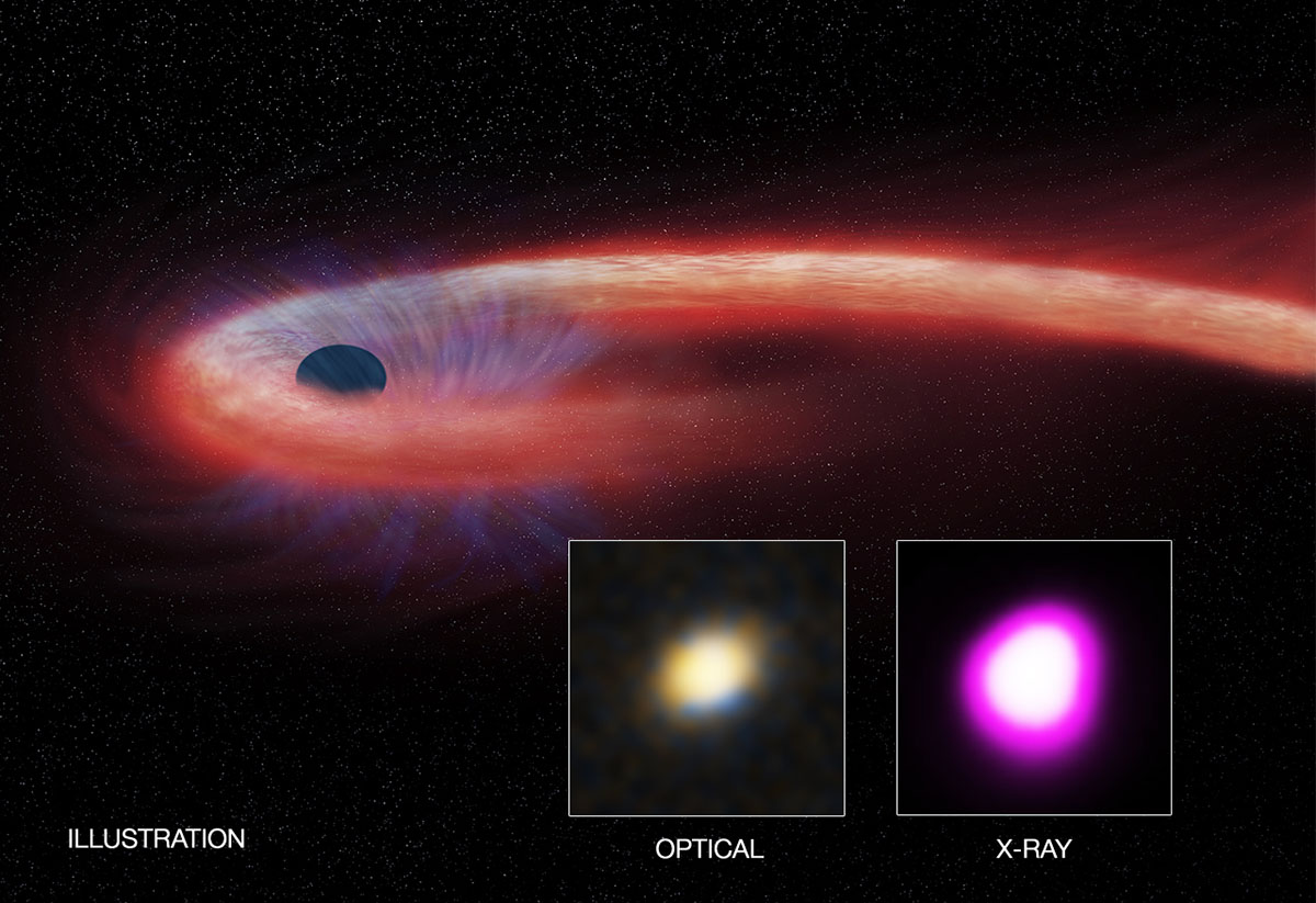 Scientists discover record shattering black hole feeding frenzy