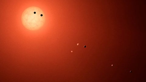 This illustration shows the seven planets orbiting TRAPPIST-1, and ultra-cool dwarf star, as they might look as viewed from Earth using a fictional, incredibly powerful telescope. (NASA-JPL/Caltech)