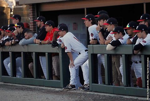 Austin Peay Baseball falls at Southeast Missouri 10-0, Saturday. (APSU Sports Information)