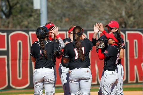 Austin Peay Softball games against Belmont and Tennessee State postponed this weekend due to rain. (APSU Sports Information)