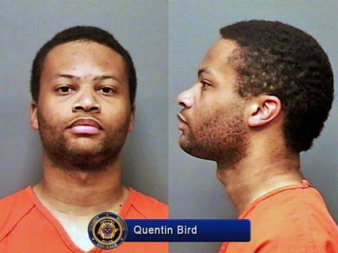 Quentin Bird