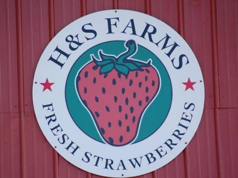 2017 H&S Farms Strawberry Slam this weekend at Heritage Park.