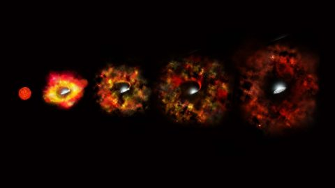 This illustration shows the final stages in the life of a supermassive star that fails to explode as a supernova, but instead implodes to form a black hole. (NASA/ESA/P. Jeffries (STScI))