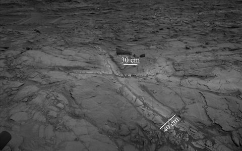 "Pale zones called ""halos"" border bedrock fractures visible in this 2015 image from NASA's Curiosity Mars rover. Measurements overlaid on the image offer a sense of scale for the size of these fractures. The rover team determined that the halos are rich in silica, a clue to the duration of wet environmental conditions long ago. The location is on the lower slope of Mars' Mount Sharp. (NASA/JPL-Caltech)"