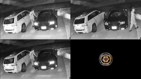 Clarksville Police are asking the publics help identifying the person in this these photos.