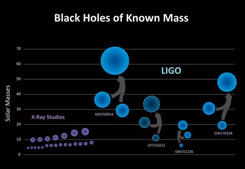LIGO has discovered a new population of black holes with masses that are larger than what had been seen before with X-ray studies alone (purple). The three confirmed detections by LIGO (GW150914, GW151226 and GW170104) and one lower-confidence detection (LVT151012) all point to a population of stellar-mass binary black holes that, once merged, are larger than 20 solar masses. (LIGO/Caltech/Sonoma State (Aurore Simonnet))