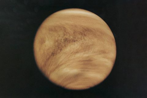 As seen in the ultraviolet, Venus is striped by light and dark areas indicating that an unknown absorber is operating in the planet's top cloud layer. The image was taken by NASA's Pioneer-Venus Orbiter in 1979. (NASA)