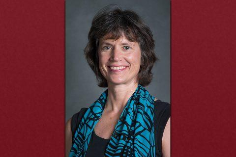Austin Peay Professor of English literature and Coordinator of the Film Studies Minor, Dr. Jill Franks.