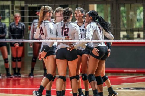 Austin Peay Volleyball takes down Mercer in four sets Saturday at Ole Miss Classic. (APSU Sports Information)