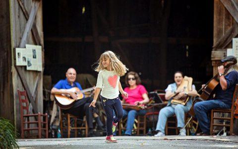 Heritage Music Festival at Nashville Zoo. (Amiee Stubbs)
