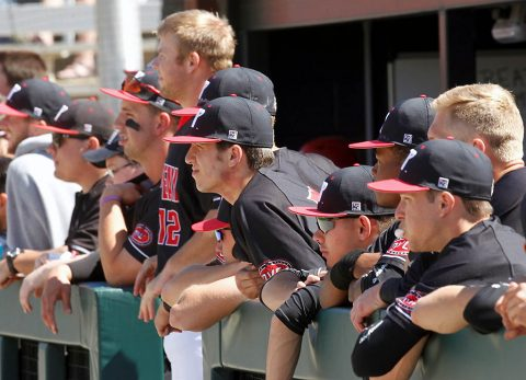 Austin Peay Baseball has 56 games in the 2018 Schedule. (APSU Sports Information)