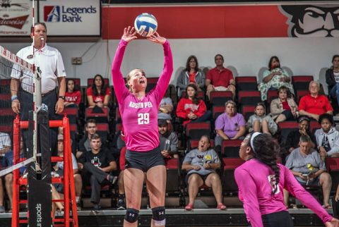 Austin Peay Volleyball travels to Western Kentucky, Tennessee Tech and Jacksonville State this week. (APSU Sports Information)